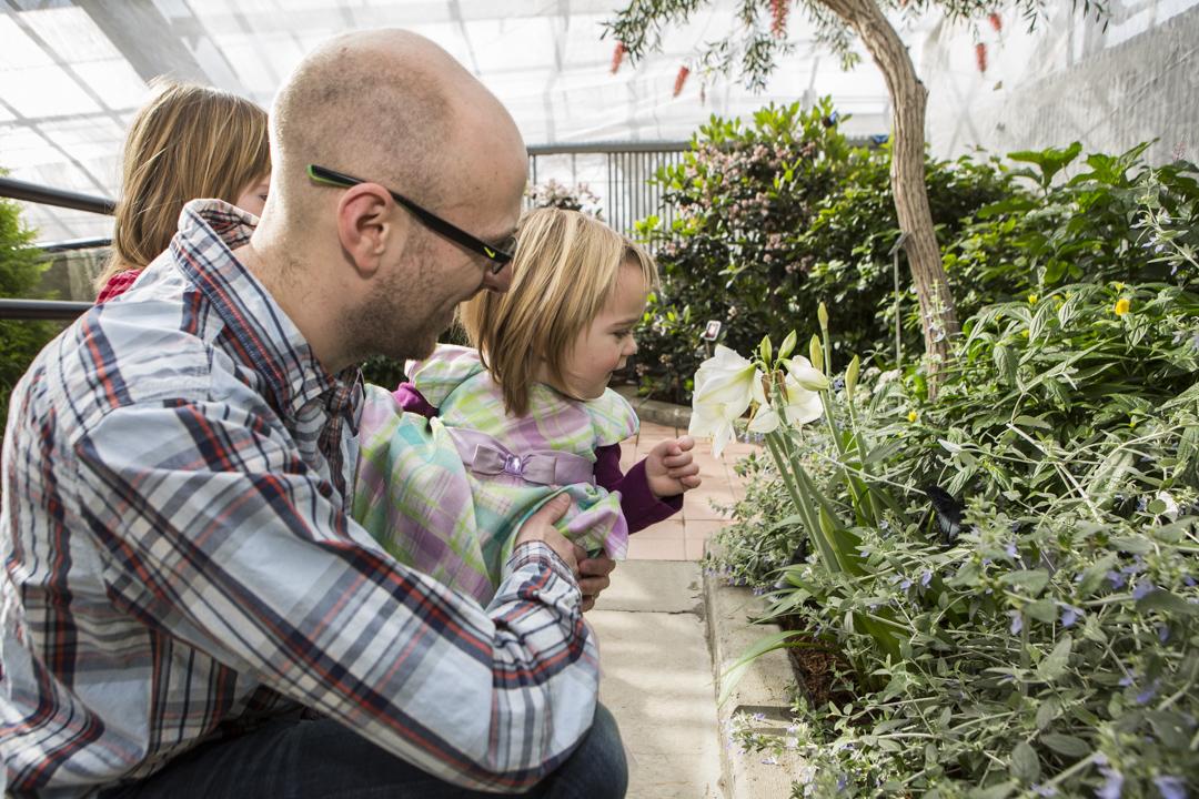 Partager son habitat pour mieux habiter la plan te for Papillon jardin botanique 2015
