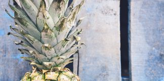 Découvrez le concept de la charte de l'ananas